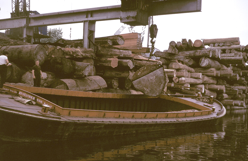 Timber on the River Lea